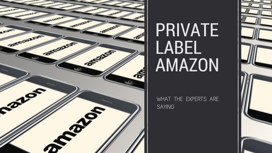 Private label amazon: what the experts are saying header